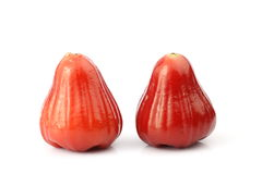 Wax apple Royalty Free Stock Image