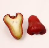 Wax apple Royalty Free Stock Photography