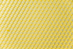 Wax base for honeycomb Royalty Free Stock Photography