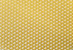 Wax base for honeycomb Stock Images
