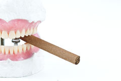 Wax denture with cigarette Royalty Free Stock Photography