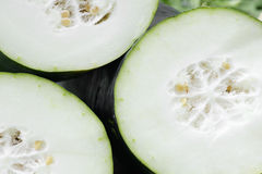 Free Wax Gourd Stock Photos - 19971223