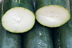 Wax gourd Royalty Free Stock Image