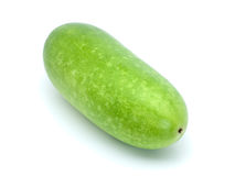 Wax gourd Stock Photography