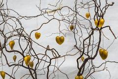 Wax hearts on twigs Stock Photos