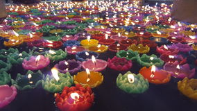 Wax lotus Royalty Free Stock Image