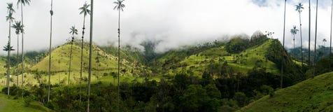 Wax palms near Salento in Colombia. Coffee triangle landscape in Valle de Cocora near Salento in Colombia stock photography