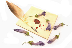 Wax sealed love letter with quill isolated Stock Image