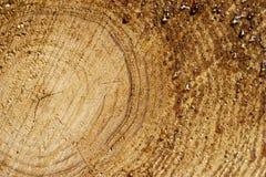 Wax on wood Royalty Free Stock Photo