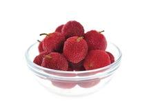 Waxberries (Bayberry chinês) imagens de stock