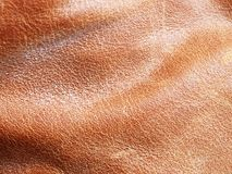 Waxed leather (second version) Royalty Free Stock Photo
