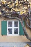 Waxed Window Royalty Free Stock Photography