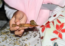Waxing batik Royalty Free Stock Photo