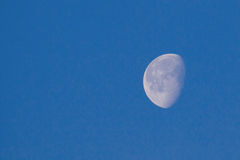 Waxing Gibbous Moon with Copy Space Stock Photo