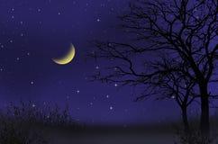 Waxing moon night scene Stock Photography