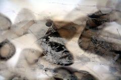 Waxy абстрактная предпосылка, который сгорели бумага Стоковое Изображение RF