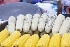 Waxy corn and corn on sale Stock Photos