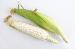Waxy Corn Stock Images