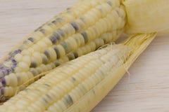 Waxy corn,waxy maize on wood background Stock Photo