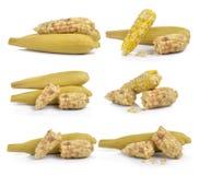 Waxy corn on white background Stock Photo