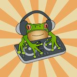 Waxy monkey tree frog DJ mixer against sunburst vintage background. Hand drawn artistic vector stock illustration