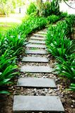 The Way. In the garden royalty free stock photography