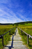 The way. Meadow with country road and blue sky Stock Photo