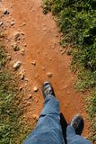 On the way. On a dirt path, two legs Stock Images