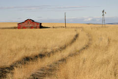 The Way In. This is a seldom used pathway for people approaching the red barn in this golden field stock image