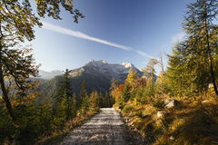 Way in autumn Royalty Free Stock Images