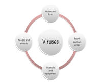 The way of Bacteria can be transmitted. The way of Bacteria and viruses can be transmitted contaminate style 7 Stock Image