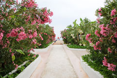 Way from beach to hotel building, Antalya, Turkey. Way from beach to hotel building, Antalya region, Turkey Stock Photo