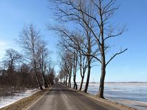 Road and beautiful winter  trees, Lithuania Stock Photos