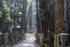 Way through  Okunoin cemetery at Koyasan, Japan.