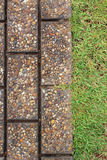 Way brick and green grass Stock Photography