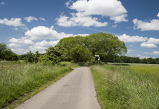 The Way. Countryside - field - trees on the horizon - light blue sky - few clouds Stock Photos
