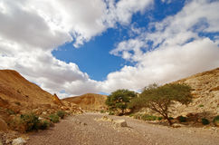 Way in the desert, near red canyon, Israel Stock Photography