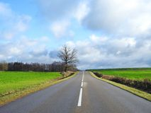 Road, trees, field and beautiful cloudy sky, Lithuania stock photography