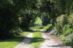 The way down the hill. Pathway leading down a hill with flowers and trees Royalty Free Stock Photos
