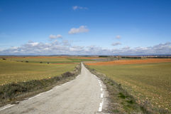 Way through the field Soria. In Castilla Leon, Spain Stock Images