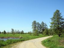 Road, lake and spring trees, Lithuania Royalty Free Stock Photo