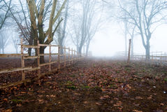 The way into the fog Stock Images