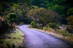 Way Through Forest... A lonely road in rural Maharashtra in India on beautiful summer day Stock Photos