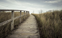The Way Forward. Steep boardwalk trail leads to  the top of a sand dune and sweeping vistas of Lake Huron Royalty Free Stock Photo