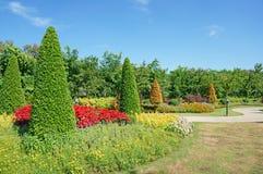 Way in the garden Stock Image