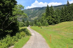 Way in Giant Mountains, Czech Republic Royalty Free Stock Photos