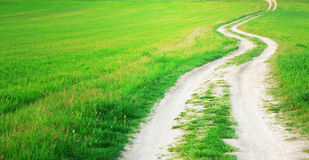 Way  in green meadow Stock Photography