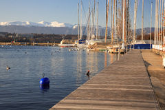 Way on the harbour. Harbour of Nautic Society on the l魡n lake in geneva Stock Photo