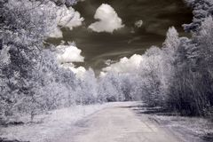 Way in infrared light Stock Photos