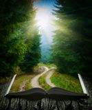 Way through the forest on the book. Way through the misty forest on the pages of an open magical book. Majestic landscape. Nature and education concept stock photos